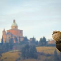 Sorvegliando San Luca foto di Maurizio rosaspina
