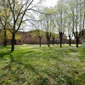Visita guidata al Castello e al Palazzo Rosso di Bentivoglio (Bo)