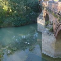immagine da Ponte dei Veneziani
