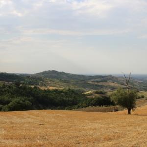 Castello di Teodorano - Panorama con scorcio di Teodorano foto di: |Serrale88| - Wiki Loves Monuments 2013