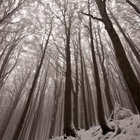 Inverno rigido sul crinale