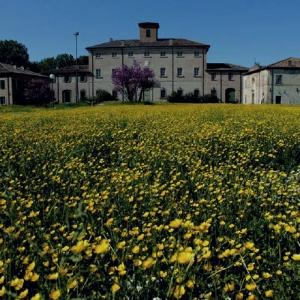 Villa Torlonia - Villa torlonia in Primavera foto di: |Archivio Comune di San Mauro Pascoli| - Comune di San Mauro Pascoli