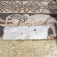 Pomposa, abbazia, interno, pavimento 08 elefante by Sailko