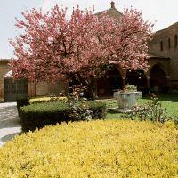 immagine da Chiesa di S. Antonio e monastero
