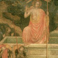 immagine da Chiesa di Sant'Apollinare o della Morte