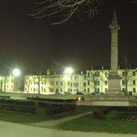 immagine da Piazza Ariostea