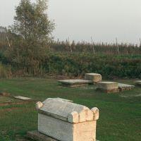 immagine da Località Voghiera