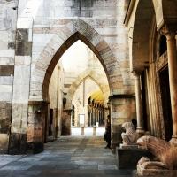Tra il Duomo e la Ghirlandina photo by Simona Bergami