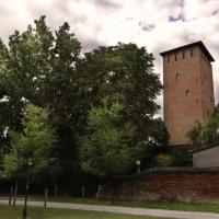 immagine da Torre dei Bolognesi - Museo di Nonantola
