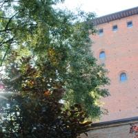 Torre dei Bolognesi - Museo di Nonantola - Torre Bolognesi 4 foto di: |Alberto Marchetti| - w