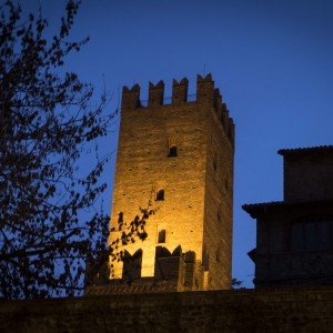 immagine da Rocca Viscontea