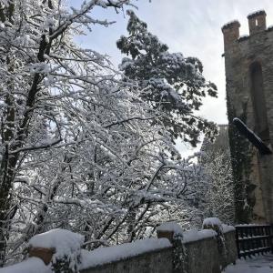 Castello di Gropparello - Castello di Gropparello  dopo una nevicata foto di: |Rita Trecci Gibelli| - Archivio fotografico del castello