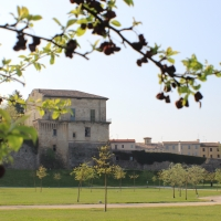 immagine da Rocca di S. Lorenzo