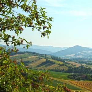 Castello di Felino - Panorama foto di: |Piu Hotels| - Piu Hotels