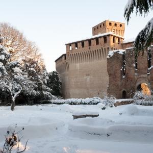 Castello di Montechiarugolo - I giardini innevati foto di: |Luca Trascinelli| - Luca Trascinelli