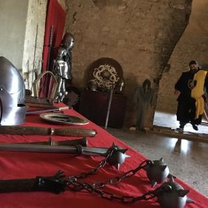 Castello di Varano de' Melegari - Sala quattrocentesca foto di: |Marco Trippa| - Marco Trippa