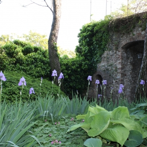 Castello di Scipione dei Marchesi Pallavicino - Castello di Scipione dei Marchesi Pallavicino - Particolare giardino foto di: |Castello di Scipione| - Castello di Scipione