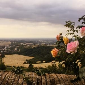 Castello di Tabiano - Il roseto sulle terrazze panoramiche foto di: |Castello di Tabiano| - Castello di Tabiano
