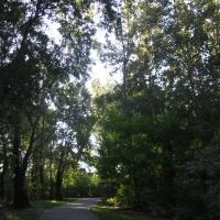 Parco del Loto, percorsi