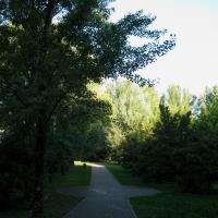 immagine da Parco del Loto