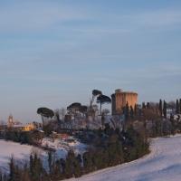 immagine da Torre di Oriolo