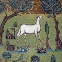 Sant'apollinare in classe, mosaici del catino, trasfigurazione simbolica, VI secolo, 08,2 agnello come apostolo photo by Sailko