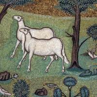 Sant'apollinare in classe, mosaici del catino, trasfigurazione simbolica, VI secolo, 12 agnelli come apostoli by Sailko