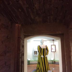 Rocca Sforzesca - Bagnara - Sala I signori della rocca foto di: |Bagnara di Romagna| - Comune