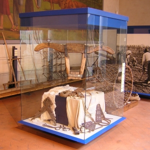 Rocca Estense - Museo dell'Agricoltura e del Mondo Rurale foto di: |-| - Comune di San Martino in Rio