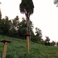 immagine da Parco del cipresso